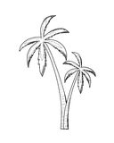 Palm - vector illustration. Royalty Free Stock Photography