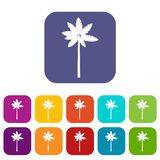 Palm woody plant icons set Royalty Free Stock Photography