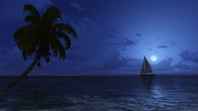 Palm and yacht silhouettes on the night sky background Royalty Free Stock Image