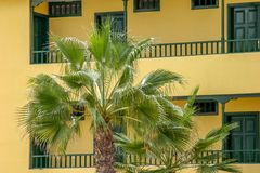 Palm - yellow orange facade Royalty Free Stock Images