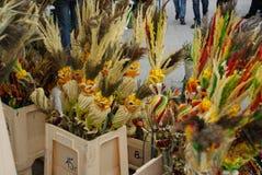 palm zondag royalty-vrije stock foto's
