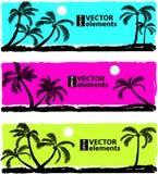 Palm zwart silhouet Stock Foto