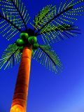 Palm2 Royalty Free Stock Photo