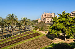 Palma, Majorca圣塔玛丽亚大教堂  免版税库存照片
