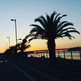 Palma της Alba Στοκ φωτογραφία με δικαίωμα ελεύθερης χρήσης