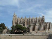 palma собора Стоковые Фото