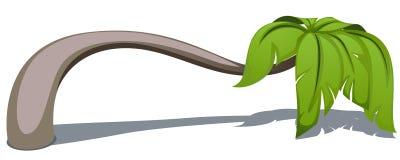 Palma ilustração stock