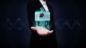 Palma aberta da mulher de negócios, corpo dianteiro zumbindo e coração de varredura Sistema cardiovascular humano, luz azul do ra ilustração royalty free