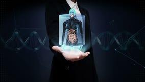 Palma abierta de la empresaria, cuerpo humano femenino de enfoque que explora los órganos internos, sistema de la digestión Luz a metrajes