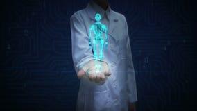 Palma abierta del doctor de sexo femenino, cuerpo azul giratorio del robot de la transparencia 3D Imagen de la radiografía Inteli metrajes