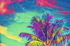 Palma al neon dei Cochi sull'illustrazione digitale del cielo vivo Modello tropicale psichedelico dell'insegna di vacanza con il  Immagine Stock Libera da Diritti