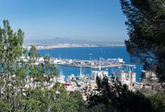 Palma-Ansicht mit Trasmediterranea-Fähre Tenacia Stockfoto