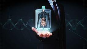 Palma aperta dell'uomo d'affari, corpo umano femminile di zumata che esplora gli organi interni, sistema di digestione Luce blu d video d archivio