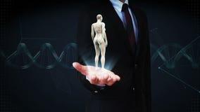 Palma aperta dell'uomo d'affari, corpo umano femminile girante, luce blu dei raggi x video d archivio