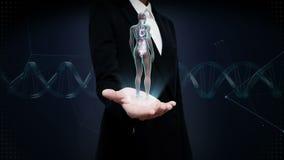 Palma aperta della donna di affari, essere umano femminile girante gli organi interni, sistema del cuore, luce blu dei raggi x stock footage
