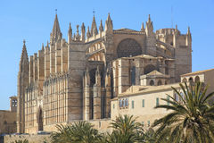 Palma Cathedral City Walls Majorca Arkivbild