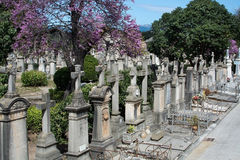 Palma cemetery crosses Royalty Free Stock Photography