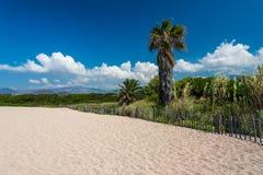 Palma cerca de la playa hermosa Vacaciones ideales para las montañas turísticas en fondo, cielo azul, nubes blancas Paraíso tropi Foto de archivo libre de regalías