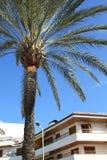 Palma. Cielo. Casa Imagen de archivo
