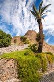 Palma, cielo nuvoloso blu, pianta verde, montagne Immagini Stock