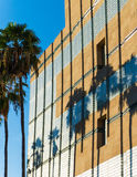 Palma cienie na budynku w Los Angeles fotografia royalty free
