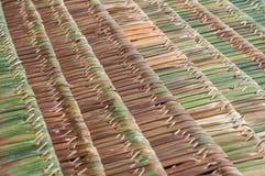 A palma cobre com sapê telhados Fotos de Stock