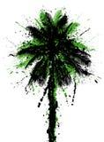 Palma de coco Fotografía de archivo