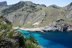 palma de de Majorque Photographie stock