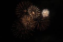 Palma de los fuegos artificiales Fotos de archivo libres de regalías