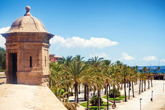 Palma de Mallorca Obrazy Royalty Free