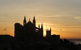 Palma de mallorca cathedral silhouette during sunrise Royalty Free Stock Photos
