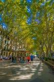 PALMA DE MALLORCA HISZPANIA, SIERPIEŃ, - 18 2017: Niezidentyfikowani ludzie przy bulwarem Urodzonym w Palmie de Mallorca, Hiszpan Fotografia Royalty Free