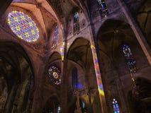 Palma de Mallorca, Hiszpania Wnętrze gothic katedra Santa Maria i Swój różany okno obraz royalty free