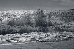 Palma de Mallorca - la grande vague et les voiles faisantes de la planche ? voile dans le barckgroud photo stock