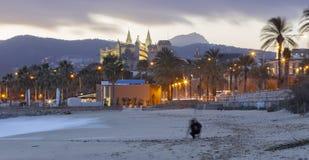 Palma de Mallorca - la plage de la ville au crépuscule et la La Seu de cathédrale à l'arrière-plan photos libres de droits