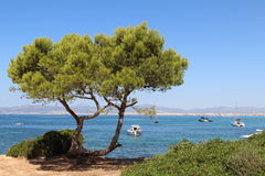 Palma de Mallorca landscape. Spain. Beautiful blue waters of Mediterranean sea and boats Stock Images