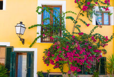 Palma de Mallorca mediterranean facades and flowers in Majorca Royalty Free Stock Photography