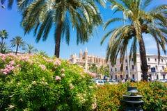 Palma de Mallorca, Port Marina Majorca Cathedral. Spain Stock Images