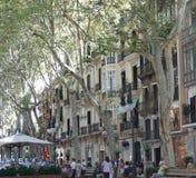 Palma de Mallorca rambla Arkivfoton