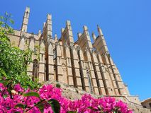 Palma de Mallorca, Spain. The gothic Cathedral of Santa Maria. Summer time Stock Image