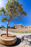 Palma de Mallorca, Spain. La Seu - the famous medieval gothic ca Stock Image