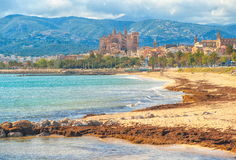 Palma de Mallorca, Spain. Sand beach in Palma de Mallorca with gothic cathedral in background, Spain royalty free stock photography