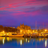 Palma de Mallorca sunrise with Cathedral and port. In Majorca Balearic islands of spain Stock Images