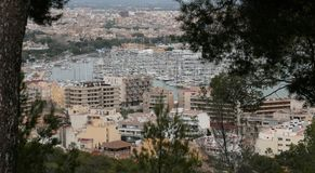 Palma de mallorca view from Bellver hill. The city of Palma de Mallorca view from nearby hill of Bellver. Local government will avoid touristic housing rentals Royalty Free Stock Images