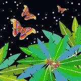 Palma del ojo del pavo real del atlas de Attacus de la mariposa en el vector del cielo de la estrella Imagenes de archivo