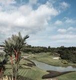 Palma del rossetto che trascura un campo da golf Fotografia Stock Libera da Diritti