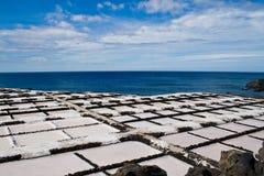 Palma della La dell'estrazione del sale Immagine Stock Libera da Diritti