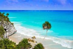 Palma della spiaggia del turchese di Tulum in maya di Riviera a maya fotografie stock