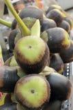 Palma dello zucchero di palma di Palmira dell'asiatico nel mercato Fotografie Stock Libere da Diritti