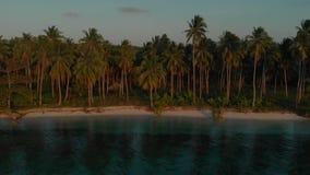 Palma di movimento e paesaggio sideway aerei dell'isola al tramonto nell'isola di Candaraman, Balabac in Filippine stock footage